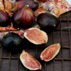 Safpa Fresh Fig Recipes